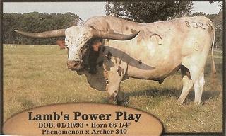 LAMB'S POWER PLAY: Texas Longhorn