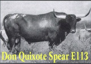 DON QUIXOTE SPEAR E: Texas Longhorn